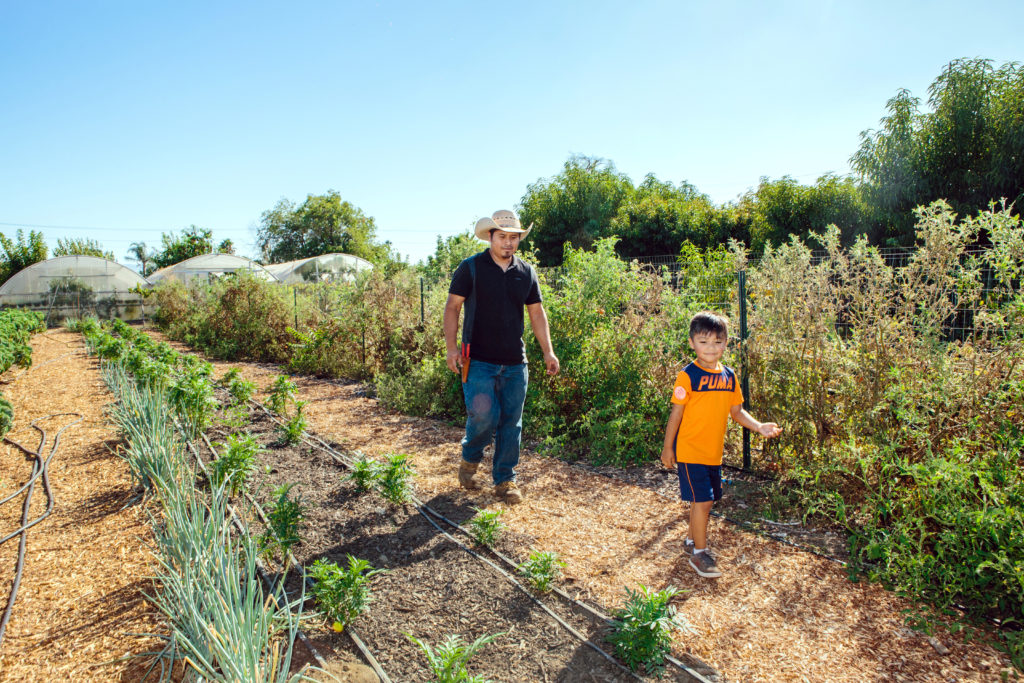 UpLift CA Community Garden Story